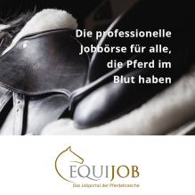 Equijob